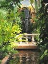 Beaumont_botanical_gardens