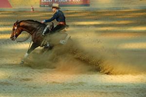 Horse_sliding_stop